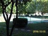 1281 Village Drive - Photo 2