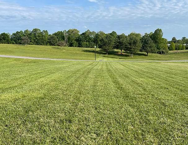 5 Lily Creek Resort Road, Jamestown, KY 42629 (MLS #20114924) :: The Lane Team
