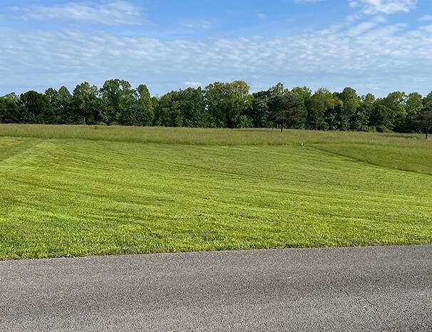 16 Lily Creek Resort Road, Jamestown, KY 42629 (MLS #20114926) :: The Lane Team