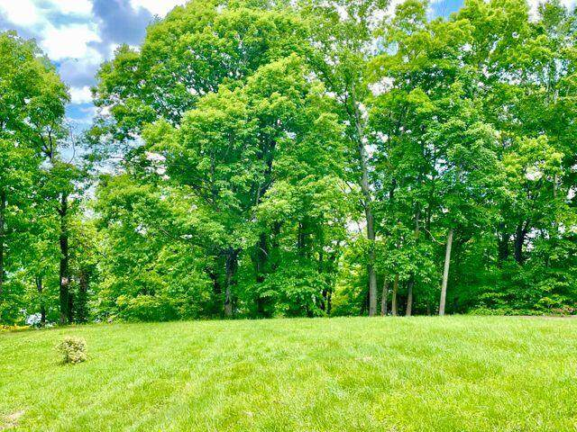 44 Green Hills Estates Road, Monticello, KY 42633 (MLS #20116007) :: Robin Jones Group