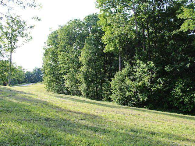 151 Scenic Point Drive, Monticello, KY 42633 (MLS #20116422) :: Nick Ratliff Realty Team