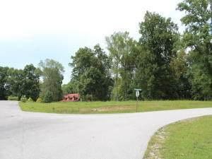 41 Black Walnut 52 Lane, Monticello, KY 42633 (MLS #20116478) :: Nick Ratliff Realty Team