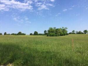 2075 Chrisman Mill-Lot #5 Road, Nicholasville, KY 40356 (MLS #20120807) :: Vanessa Vale Team