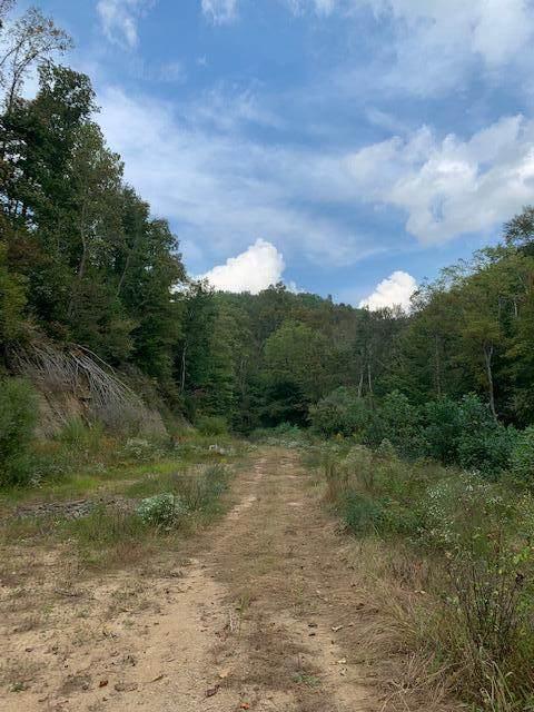 3000 Lost Creek Road, West Liberty, KY 41472 (MLS #20123348) :: The Lane Team