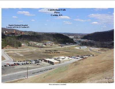99999 Cumberland Falls Highway - Photo 1