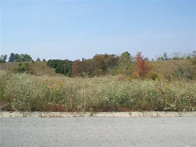 172 Thorntree Lane, Lawrenceburg, KY 40342 (MLS #1501945) :: Joseph Delos Reyes | Ciara Hagedorn