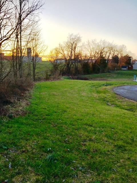 125 Elk Drive, Stamping Ground, KY 40379 (MLS #1619633) :: The Lane Team