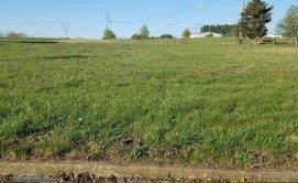 5 Misty Meadow, Somerset, KY 42503 (MLS #1806870) :: Nick Ratliff Realty Team