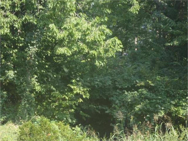23 Tanglewood Drive, Lexington, KY 40505 (MLS #1917764) :: Nick Ratliff Realty Team