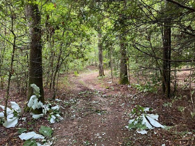 1111 Spruce Creek Road - Photo 1