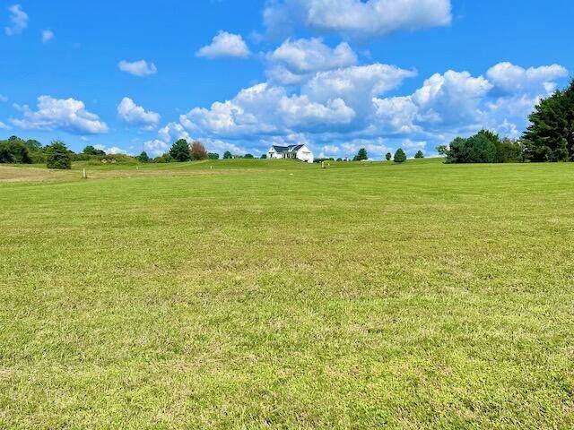 1 Lily Creek Resort Road, Jamestown, KY 42629 (MLS #20118679) :: The Lane Team