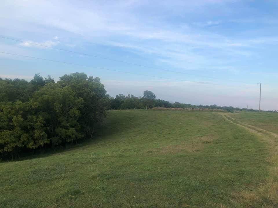 1 Long Branch Road - Photo 1