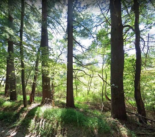 18 Meadow Lane, Tewksbury Township, NJ 08833 (#210022116) :: NJJoe Group at Keller Williams Park Views Realty