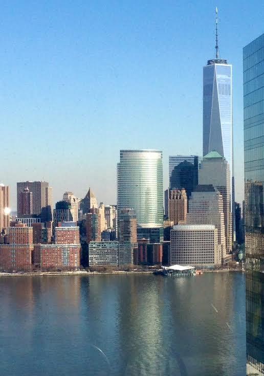 88 Morgan St #3705, Jc, Downtown, NJ 07302 (MLS #170015609) :: The Trompeter Group