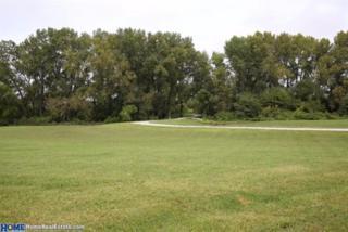 11200 Pioneers (Lot 4) Boulevard, Walton, NE 68461 (MLS #10132956) :: Nebraska Home Sales
