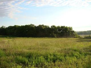 0 Stagecoach Road, Hickman, NE 68372 (MLS #10136638) :: Nebraska Home Sales