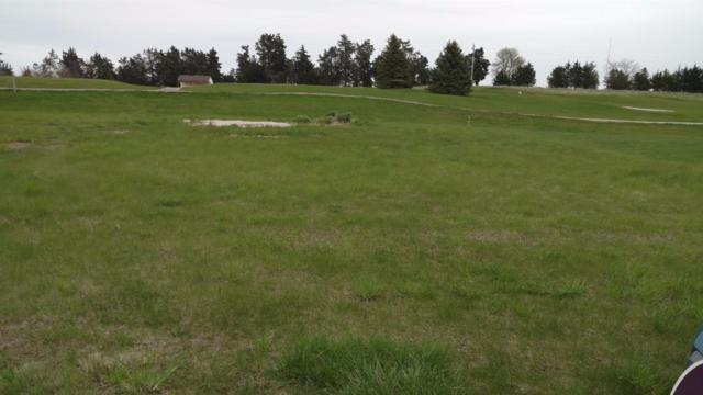 0 Lot 14 Lakeview Drive, Tekamah, NE 68061 (MLS #10139281) :: Lincoln's Elite Real Estate Group