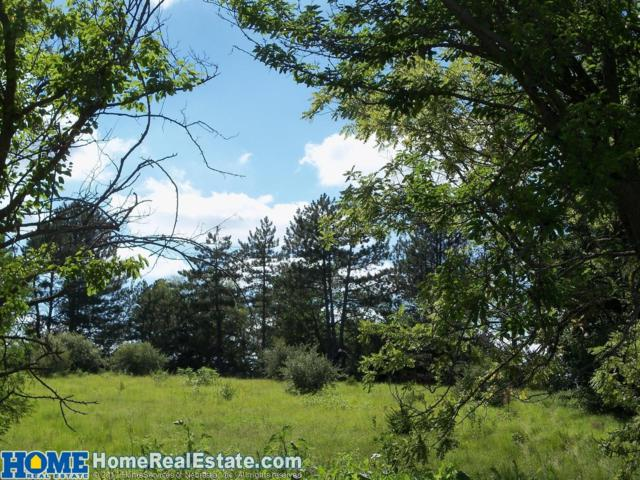 20311 N 80th Street, Davey, NE 68017 (MLS #10148015) :: Nebraska Home Sales