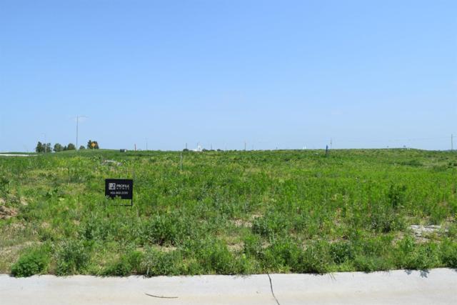 20903 Drexel Street, Elkhorn, NE 68022 (MLS #10148893) :: Lincoln Select Real Estate Group