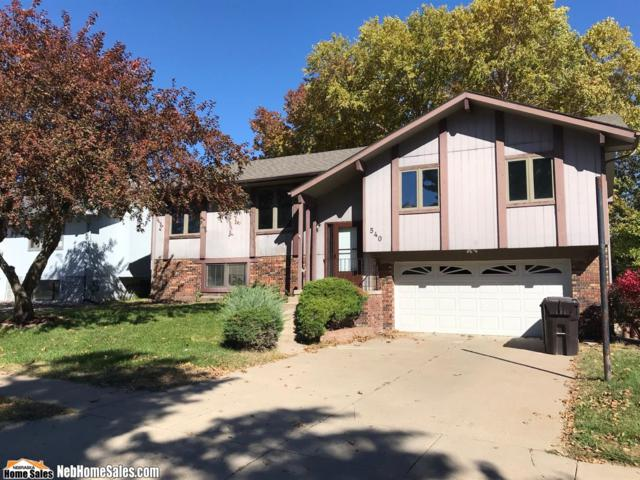 540 W Burt Drive, Lincoln, NE 68521 (MLS #10150792) :: Lincoln Select Real Estate Group
