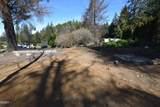855 Deerlane Loop - Photo 3