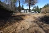 855 Deerlane Loop - Photo 4