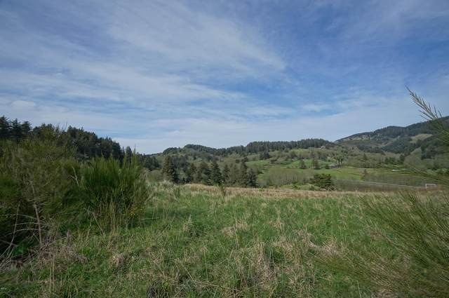 TL 300 Heron View Dr, Neskowin, OR 97149 (MLS #19-365) :: Coho Realty