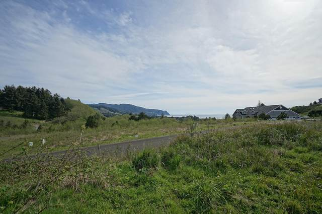 TL 400 Heron View Dr, Neskowin, OR 97149 (MLS #19-366) :: Coho Realty