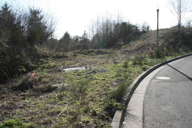 Lot 117 NE Voyage Way, Lincoln City, OR 97367 (MLS #19-564) :: Coho Realty