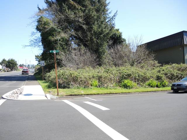 1700 NW 22nd Street, Lincoln City, OR 97367 (MLS #20-757) :: Coho Realty