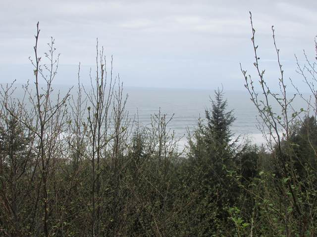 TL 6600 Gimlet Ln, Yachats, OR 97498 (MLS #20-822) :: Coho Realty