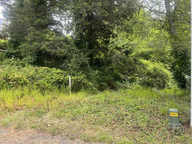 2700 BLK SW Coast Tl1300 Avenue, Lincoln City, OR 97367 (MLS #20-963) :: Coho Realty