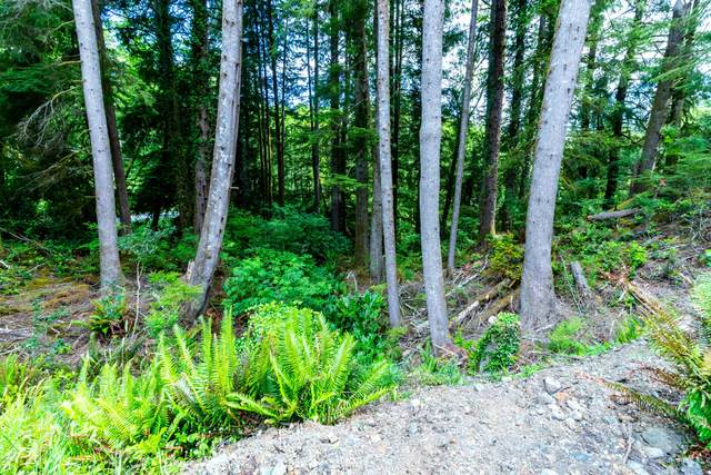 Lot 7 NE West Devils Lake Rd, Lincoln City, OR 97367 (MLS #20-997) :: Coho Realty