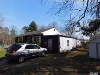 508 Martha Ave, Bellport, NY 11713 (MLS #2941168) :: Signature Premier Properties
