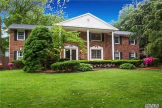 31 Tree Hollow Ln, Dix Hills, NY 11746 (MLS #2940804) :: Signature Premier Properties
