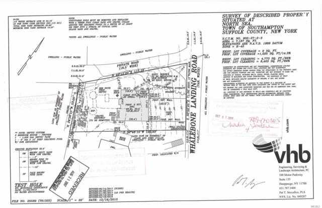 61 Whalebone Landin Rd, Southampton, NY 11968 (MLS #2998038) :: Keller Williams Points North