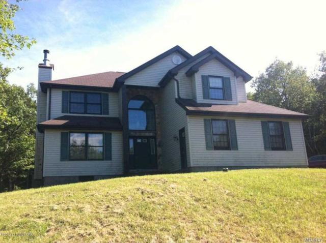 323 Russell Ct, Out Of Area Town, PA 18330 (MLS #2999607) :: The Lenard Team