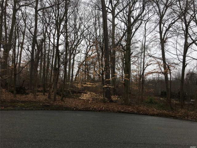 Twin Ponds St, Great Neck, NY 11024 (MLS #3007805) :: Netter Real Estate