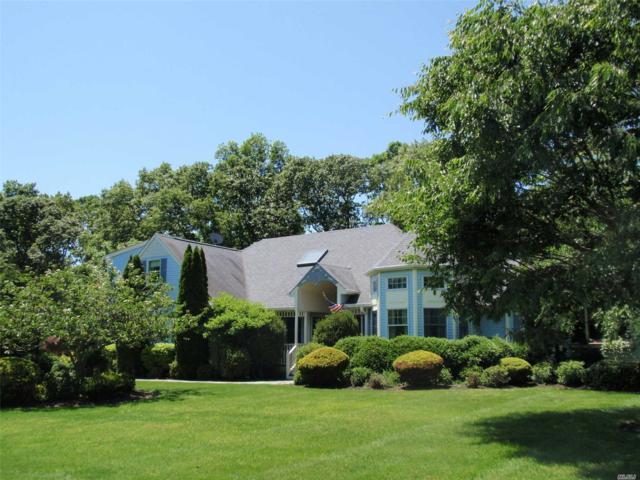 173 Michaels Ln, Wading River, NY 11792 (MLS #3016759) :: Netter Real Estate