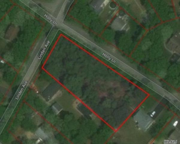 Holly Ln, Shirley, NY 11967 (MLS #3018373) :: Shares of New York
