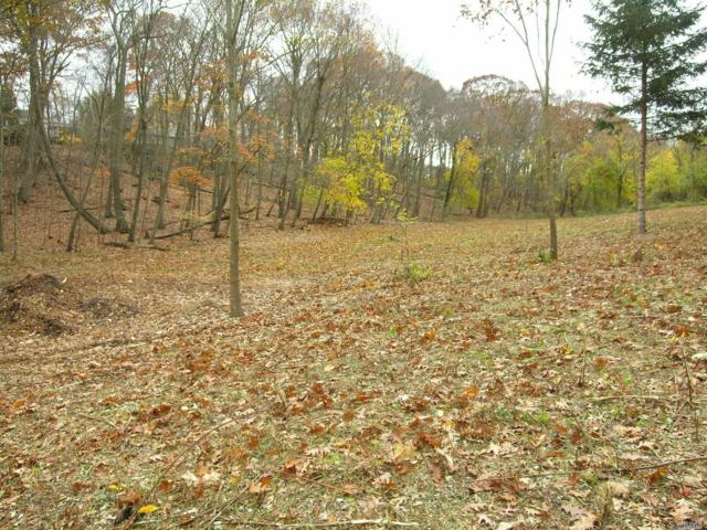 1253 North Country Rd, Head Of Harbor, NY 11780 (MLS #3025583) :: Shares of New York