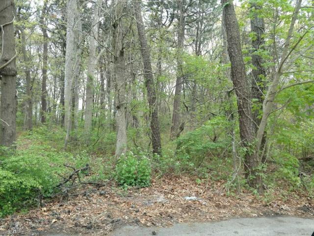 Lot #1 Mowbray St, Patchogue, NY 11772 (MLS #3027076) :: Netter Real Estate