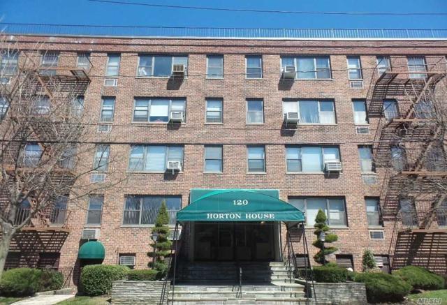 120 Horton Hwy A6, Mineola, NY 11501 (MLS #3028550) :: Netter Real Estate