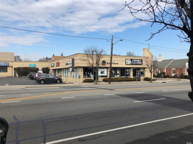 234 Jericho (Plaza) Tpke, Mineola, NY 11501 (MLS #3031155) :: Netter Real Estate
