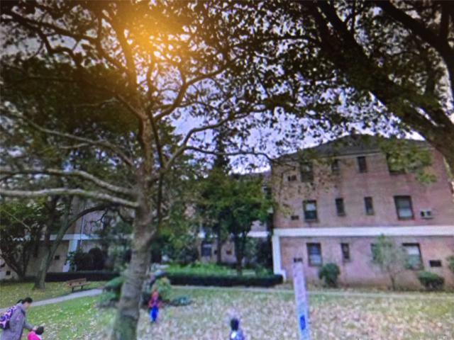 3 East Mill Dr 2D, Great Neck, NY 11021 (MLS #3032365) :: The Lenard Team