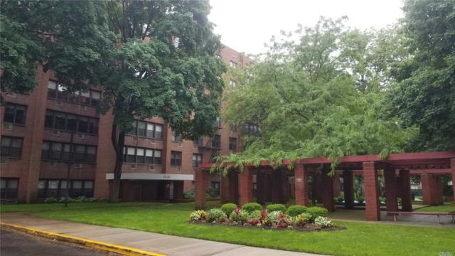 75-34 Bell Blvd 1D, Oakland Gardens, NY 11364 (MLS #3035054) :: Shares of New York