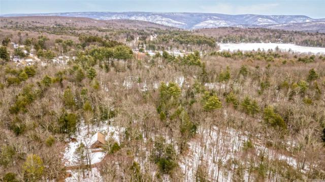 Out Of Area Town, NY 12428 :: Netter Real Estate
