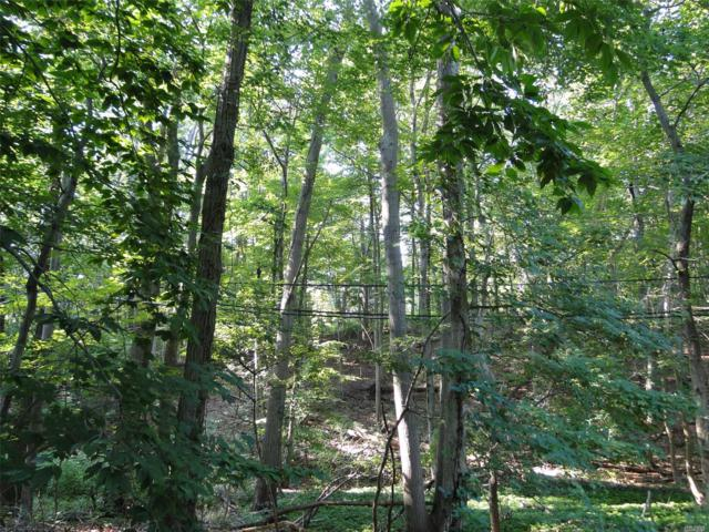 18 A Valley Cir, Miller Place, NY 11764 (MLS #3054300) :: Netter Real Estate