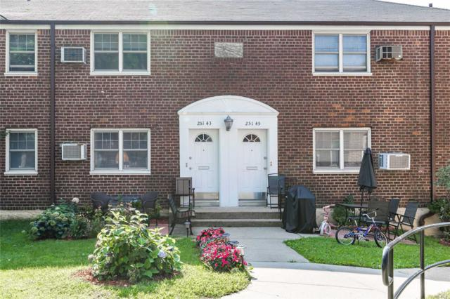 251-43 61st Ave Lower, Little Neck, NY 11362 (MLS #3065299) :: Shares of New York