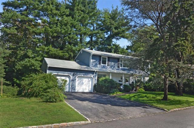 1 Terrace Ct, Port Washington, NY 11050 (MLS #3066895) :: The Lenard Team